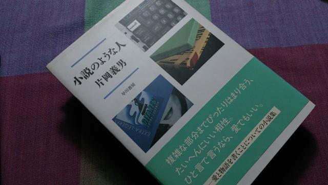 ◆◇ 小説のような人